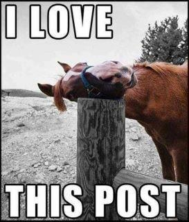 love_post