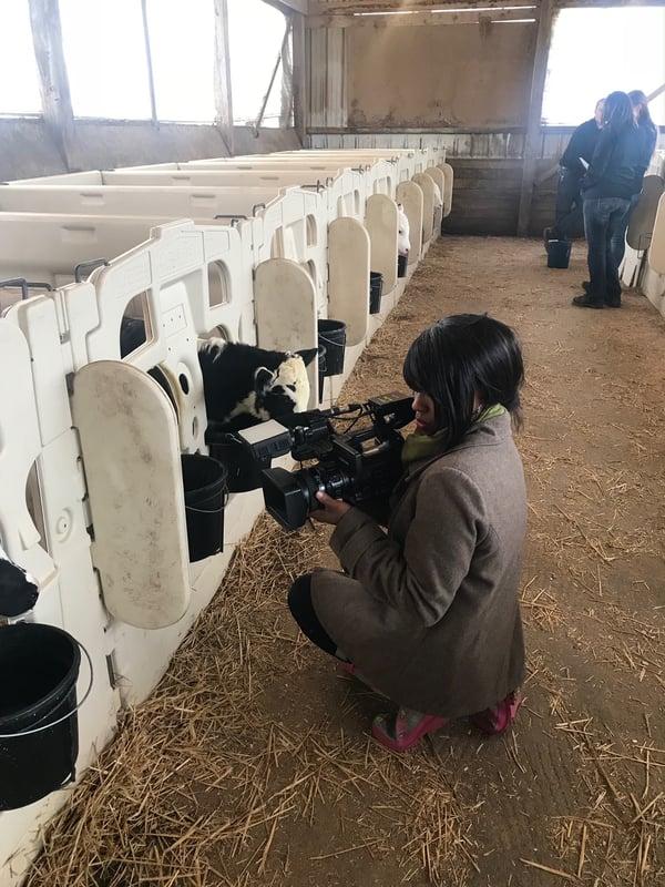 Horning farm3